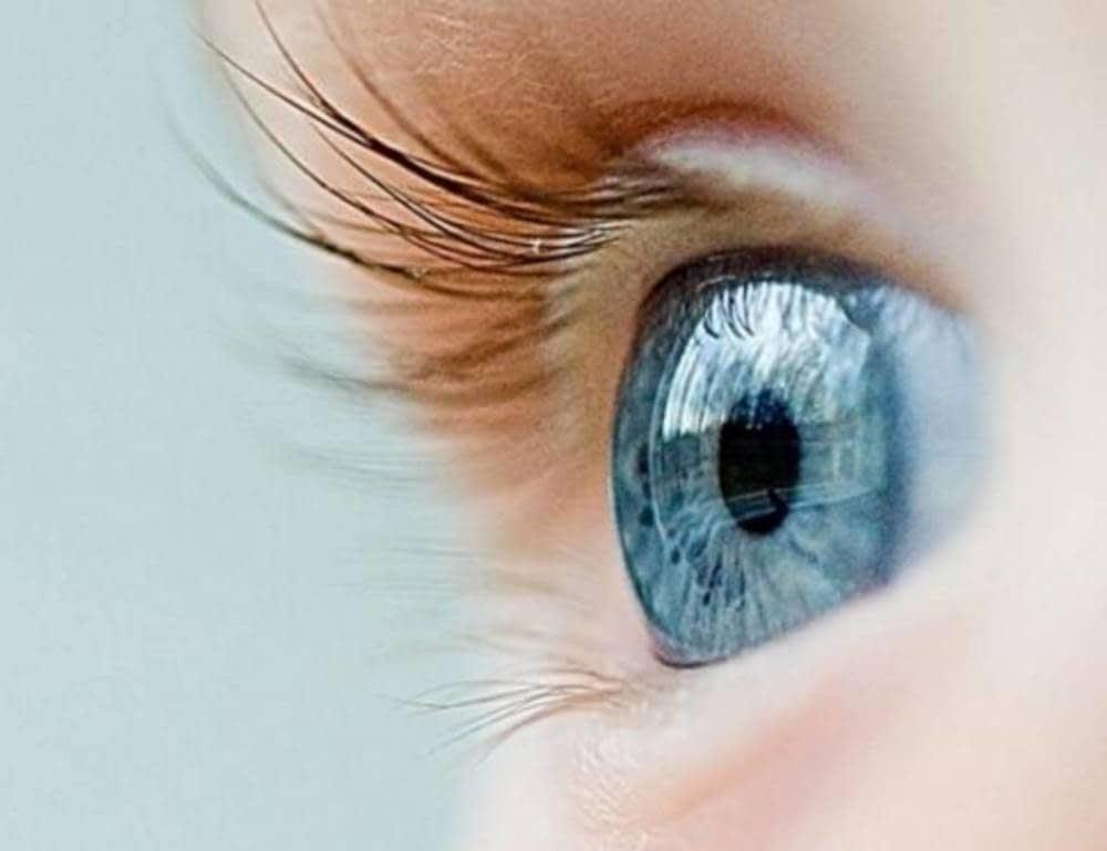 e0f4eeaa39 Garantía de adaptación 60 días. Dispones de 60 días para adaptarte a tu  nueva montura, cristales graduados o lentes de contacto (excepto lentes de  contacto ...